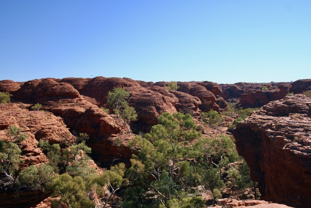 Kings Canyon (122)