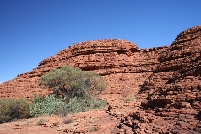 Kings Canyon (163)