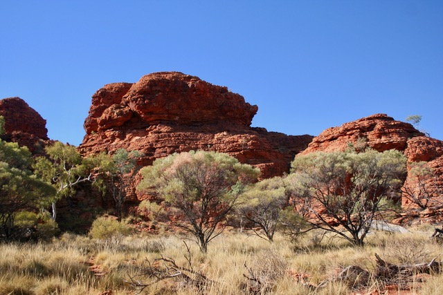 Kings Canyon (19)