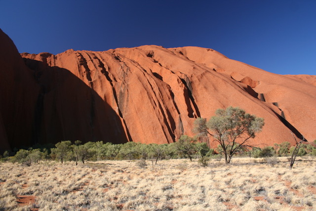Uluru base walk (17)