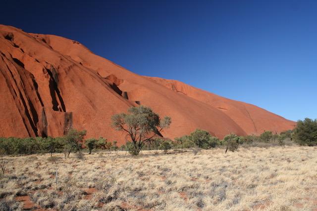 Uluru base walk (18)