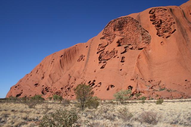 Uluru base walk (32)