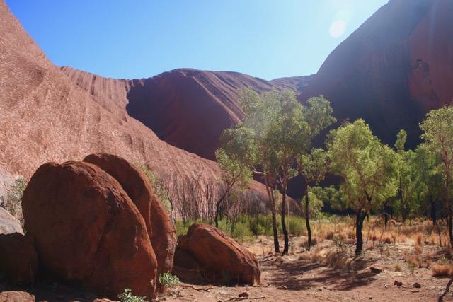 Uluru base walk (73)