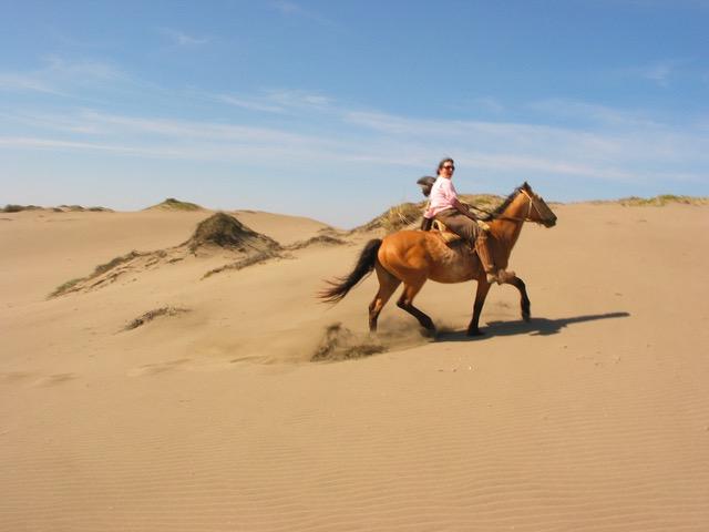 Horse ride (20)