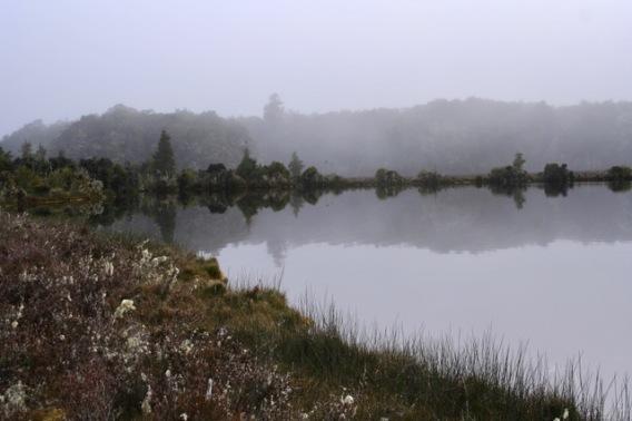 Lake Manapuri (34)