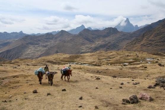 Lares to Ollantaytambo Trek (108)