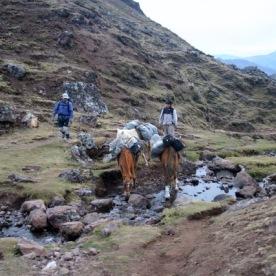 Lares to Ollantaytambo Trek (63)